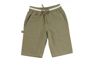 PIGEON Painter Shorts Olive