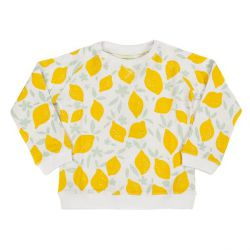 Sweater Brice Lemons