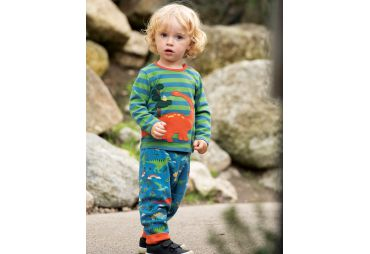 FRUGI H19 t-shirt meadow stripe dino